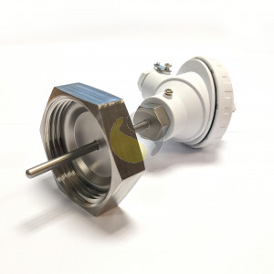 Pt100 with RJT Fitting for Hygienic Applications