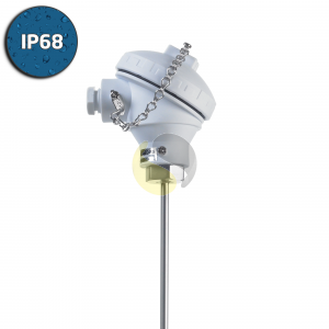 Pt100 RTD Sensor with IP68 FDA Approved (KPP) Head