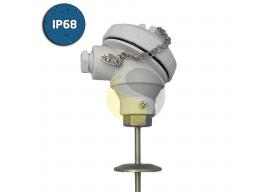 Hygienic RTD (Pt100) Sensor IP68