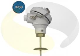 Hygienic RTD (Pt100) Sensor