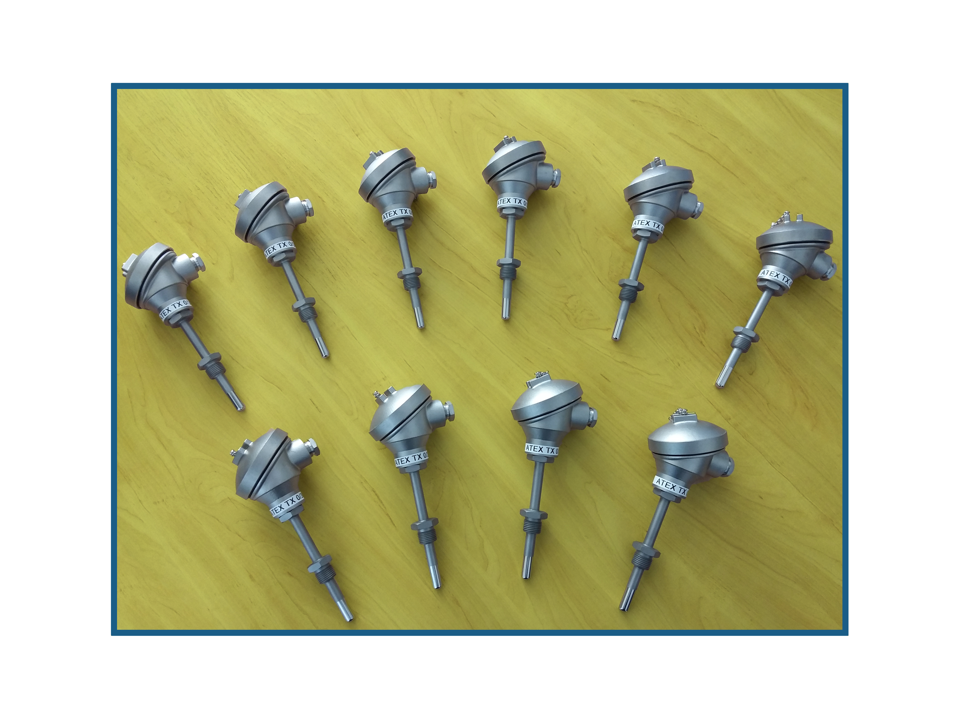 Variety of Intrinsically safe temperature Sensors
